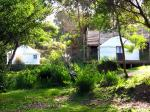 Yurts in the trees